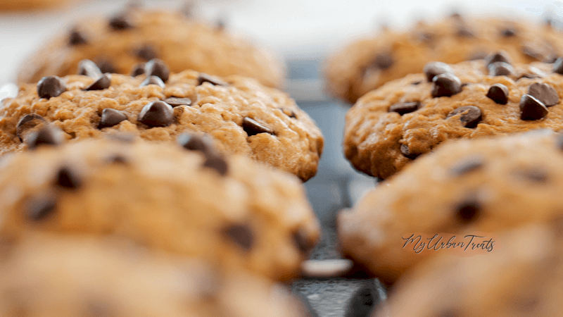 The BEST Vegan Peanut Butter Banana Oatmeal Cookie